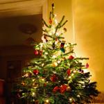 Lightbox christmas tree
