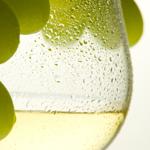 Lightbox white wine