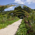 Lightbox Garden