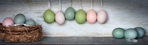 Sichern Sie sich jetzt Ihr Oster-Nest